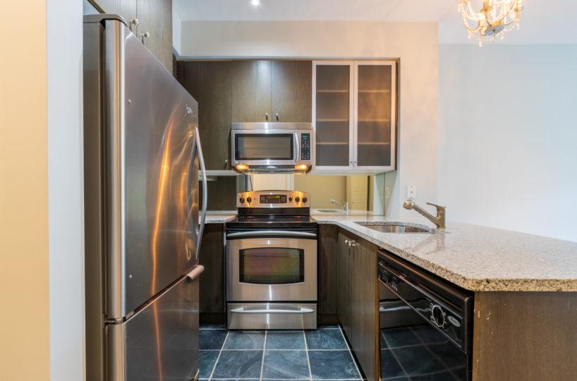 Rental Apartment Kitchen, Fridge, microwave, Sink, Dish washer